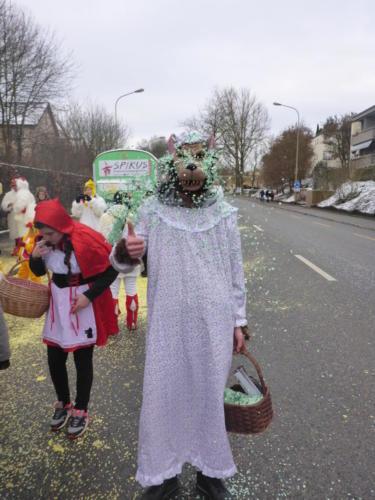fasnacht dielsdorf 2015 028
